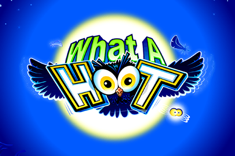 logo what a hoot microgaming